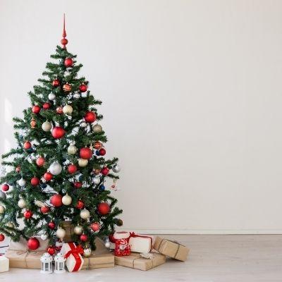 Navidad en la clínica Barrena Craus